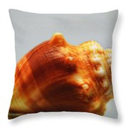 Strombus Alatus Throw Pillow