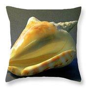 Strombus Inermis Seashell Throw Pillow