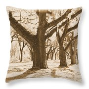 Strong And Proud In The South - Old World Throw Pillow