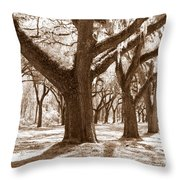 Strong And Proud In The South Throw Pillow