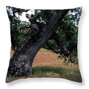 Strong Old Oak Throw Pillow