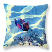 Strong Teeth. Very Tasty Corals. Hollywood Smile. Throw Pillow