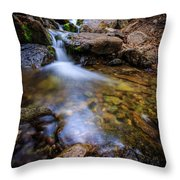 Strongs Canyon Throw Pillow