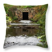 Structure Of A Stream Throw Pillow