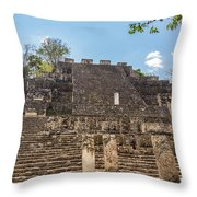 Structure Two In Calakmul Throw Pillow