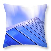 Structured 44 Throw Pillow