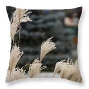 Structures 1 Throw Pillow