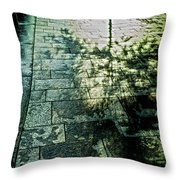Struggle Of Light And Shadow Throw Pillow
