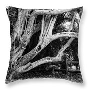Struggles Throw Pillow