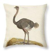 Struisvogel, Anonymous, 1560 - 1585 Throw Pillow