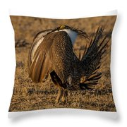 Strutting And Puffing Throw Pillow