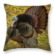 Strutting For The Ladies Throw Pillow