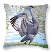Strutting Sandhill Crane Throw Pillow by Carol Groenen