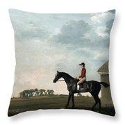 Stubbs: Gimcrack, 1765 Throw Pillow