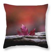 'stuck In Autumn' Throw Pillow