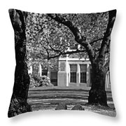 Student Reading Under Tree Throw Pillow