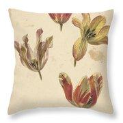 Studies Of Four Tulips, Elias Van Nijmegen, C. 1700 - C. 1725 Throw Pillow