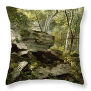 Study From Nature   Rocks And Trees Throw Pillow