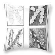 Study In Arrowheads Throw Pillow