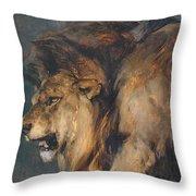 Study Of A Lion Throw Pillow