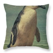 Study Of A Penguin Throw Pillow