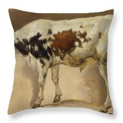 Study Of A Young Bull Throw Pillow
