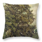 Study Of An Ash Tree Throw Pillow