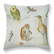 Study Of Birds And Monkeys Throw Pillow