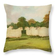 Study Of Sheep In A Landscape   Throw Pillow by Richard Whitford