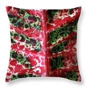 Study Of The Croton 3 Throw Pillow
