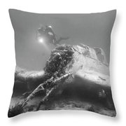 stuka bomber wreck II Throw Pillow