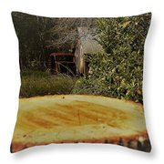 Stump Barn Car Throw Pillow