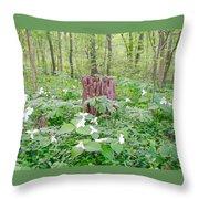 Stump By The Trilliums Throw Pillow