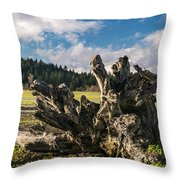 Stump In Field  Throw Pillow