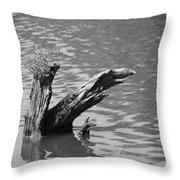 Stump In Lake Throw Pillow