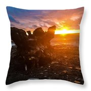 Stump On Lake Erie Throw Pillow