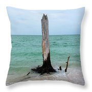 Stump Pass Tree In Color Throw Pillow