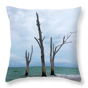 Stump Pass Triplets Throw Pillow