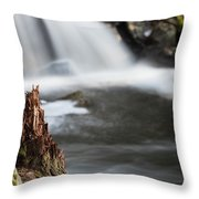 Stumped At The Secret Waterfall Throw Pillow