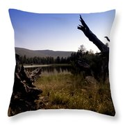 Stumped By The Lake Throw Pillow