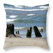 Stumpy Beach Throw Pillow