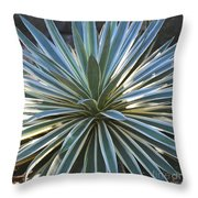 Stunning Agave Plant Throw Pillow