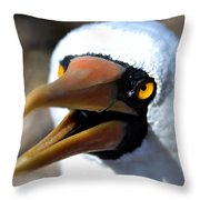 Stunning Nazca Booby Throw Pillow