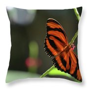 Stunning Orange And Black Oak Tiger Butterfly In Nature Throw Pillow