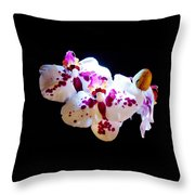 Stunning Twin Orchids Throw Pillow