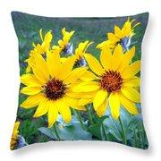Stunning Wild Sunflowers Throw Pillow