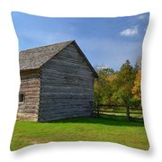 Sturdy Out Building Throw Pillow