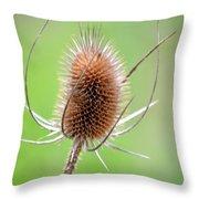 Style Throw Pillow