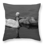 Stylish Swim Throw Pillow
