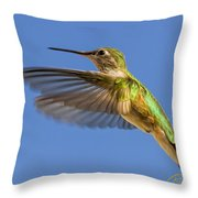 Stylized Hummingbird In Hover Throw Pillow
